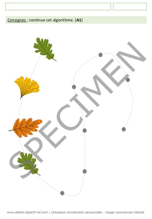séquence thématique la forêt thème ief moyenne section MS fichiers arbres