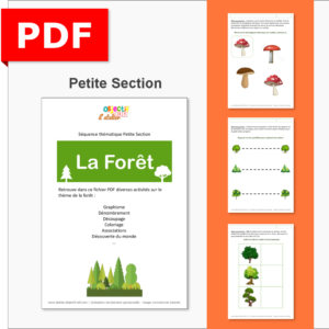 séquence thématique la forêt thème ief petite section PS fichiers arbres