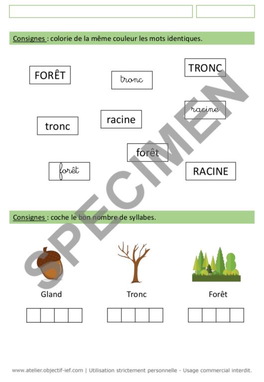 séquence thématique la forêt thème ief grande section GS fichiers arbres