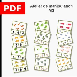 atelier de manipulation dénombrement cartes à pince MS moyenne section maternelle ief