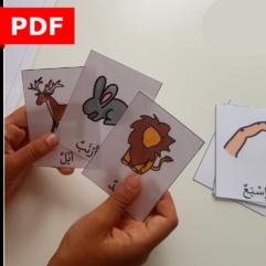 cartes vocabulaire arabe langue arabe sans représentation ief maternelle primaire