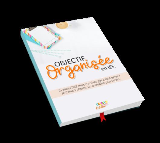 ebook objectif organisée en ief instruction en famille organisation méthode conseil maman ief