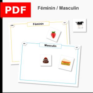 atelier féminin masculin genre cycle 2 ief instruction en famille