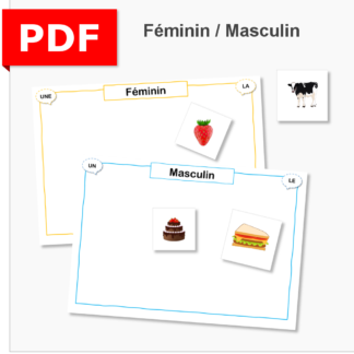 atelier féminin masculin genre cycle 2 ief instruction en famille